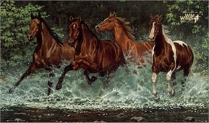 "Chris Cummings Limited Edition Print:""Cascade Run"""