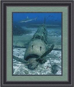 "Randall Scott Framed Limited Edition Print:""Fallen Sun-Mitsubishi A6M Zero"""