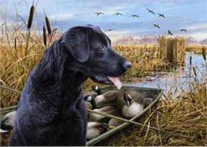 "Jim Killen Limited Edition Print:The Empty Blind: ""Black Lab"""