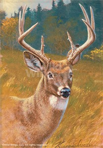 "Lee Kromschroeder Original Oil Painting:""Dream Buck-Whitetail Deer"""