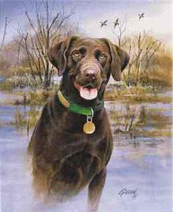 "Jim Killen Limited Edition Print:My Companion: ""Choc. Lab"""