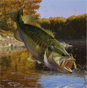 "Mark Susinno Limited Edition Print:""Cartwheeling-Largemouth Bass"""