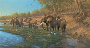 "Michael Sieve Hand Signed and Numbered Limited Edition Giclee on Canvas Edition: ""On the Banks of the Great Zambezi"""