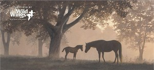 "Persis Clayton Weirs Handsigned  & Numbered Limited Edition:""Dawn's First Light"""