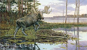 "Ron Van Gilder Canvas Limited Edition Print:""Backwater Bull-Moose"""
