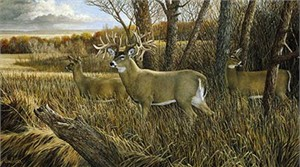 "Ron Van Gilder Limited Edition Print:""The Missouri Giant-Deer"""