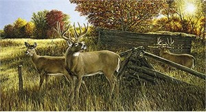 "Ron Van Gilder Limited Edition Print:""The Waiting Game-Deer"""