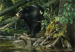 "Ron Van Gilder Limited Edition Print:""When Spring Calls -Bear"""