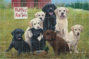 "Jim Killen Handsigned and Numbered Limited Edition: ""Duck Daze-Lab Puppies"""