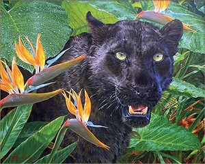 "Lee Kromschroeder Handsigned and Numbered Limited Edition Giclee on Canvas:""Trouble in Paradise-Black Leopard """