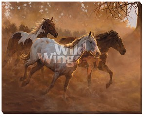 "Chris Cummings Oversized Gallery Wrap Canvas:""Gold Run"""
