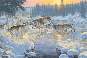 """Lee Kromschroeder Limited Edition Premiere Canvas Giclee:""""Through the Woods – Wolves"""""""