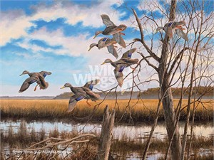 "David A. Maass Hand Signed and Numbered Limited Edition:""Pride of the East – Black Ducks"""