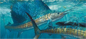 "Mark Susinno Limited Edition Premier Giclée Canvas:""Batting Cleanup – Sailfish"""