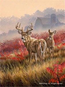 "Rosemary Millette Handsigned and Numbered Limited Edition:""Lifting Fog – Whitetail Deer"""