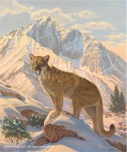 "Lee Kromschroeder Limited Edition Premier Giclée Canvas:""Spirit of the West – Cougar"""