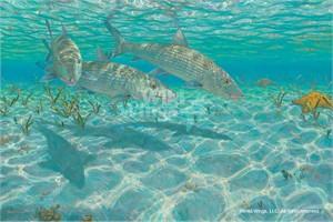"Mark Susinno Limited Edition Premier Giclée Canvas:""Ghosts-Bonefish"""