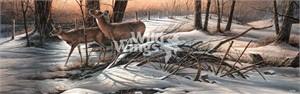 "Terry Redlin Horizon Open Edition Print: ""Browsing – Whitetail Deer"""
