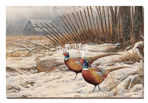 "Rosemary Millette Gallery Wrapped Canvas Giclee:""Windbreak Refuge – Pheasants """