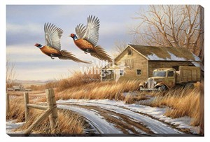 """Rosemary Millette Gallery Wrapped Canvas Giclee:""""Weathered Memories – Pheasants"""""""