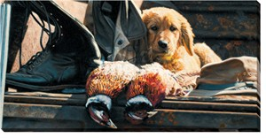 "John Aldrich Oversized Gallery Wrap :""Hunting Equipment Used & Brand New – Golden Retriever"""