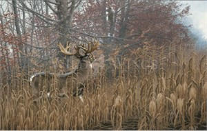 """Michael Sieve Handsigned & Numbered Limited Edition Print:""""Mike Beatty and the Beatty Buck """""""