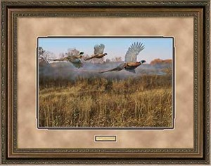 "Scot Storm Handsigned and Numbered Limited Edition: ""Framed Morning Mist-Pheasants AP"""