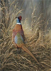 "Rosemary Millette Handsigned and Numbered Limited Edition Artist Proof Print:""Late Season Solitude - Pheasants"""