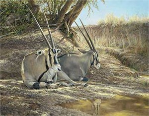 "Ron Van Gilder Handsigned and Numbered Limited Edition: ""Heat of the Day-Gemsbok Canvas"""