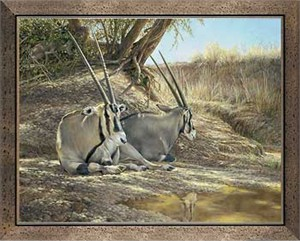 "Ron Van Gilder Handsigned and Numbered Limited Edition: ""Framed Heat of the Day-Gemsbok Canvas"""