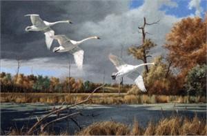 "David MaasHandsigned & Numbered Limited Edition Print:""Autumn at Baker"""