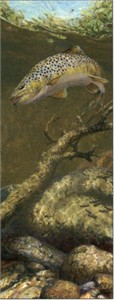 "Mark Susinno Handsigned & Numbered Limited Edition Print:""The Refusal - Brown Trout"""