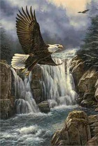 "Rosemary Millette Limited Edition Print: ""Majestic Flight-Bald Eagle"""