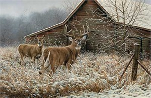 """Rosemary Millette Limited Edition Artist Proof:""""Chance Encounter """""""