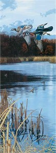 """Scot Storm Handsigned Open Edition:""""Over the Decoys"""""""