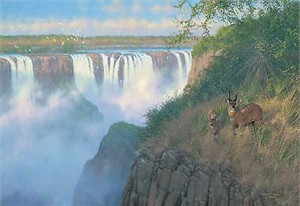 "Michael Sieve Hand Signed & Number Limited Edition Giclee on Canvas:""Victoria Falls Bush Buck"""