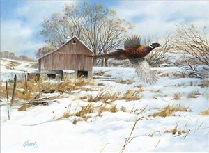 "Jim Killen Hand Signed & Number Limited Edition Canvas Giclee:""Pheasant Country"""