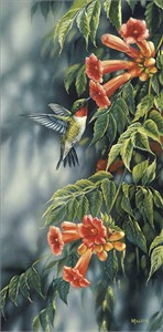 "Rosemary Millette Handsigned & Numbered Limited Edition Print:""Summer-Ruby Hummingbird"""