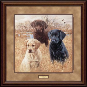 "Jim Killen Hand Signed Framed Open Edition Print:""Marsh Daze-Puppies"""