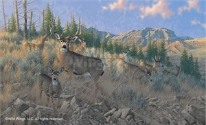 "Michael Sieve Hand Signed and Numbered Limited Edition Print: ""The Magic Hour-Mule Deer"""
