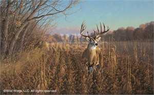 "Michael Sieve Hand Signed and Numbered Limited Edition Framed Print w/ Arrow: ""Beanfield Buck Framed with Arrow"""