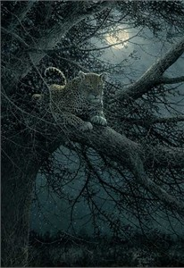 "Michael Sieve Premier Limited Edition Giclee on Canvas: ""Moonwatch - Leapard"""