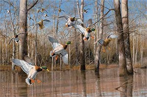 "David A. Maass Handsigned and Numbered Limited Edition Artist Proof Print: ""Waterfowling Hot Spots"""