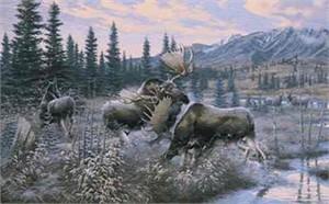 "Michael Sieve Limited Edition Print: ""Battling Bulls - Moose"""