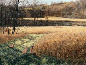 "Scot Storm Handsigned and Numbered Limited Edition Print: ""Legacy ll-Pheasants"""