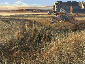 "Scot Storm Handsigned and Numbered Limited Edition Print: ""Legacy V-Prairie Heritage"""