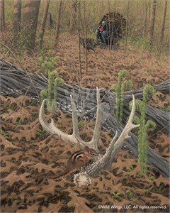 "Michael Sieve Handsigned and Numbered Limited Edition Print: ""April's Promise-Turkey & Shed Antler"""