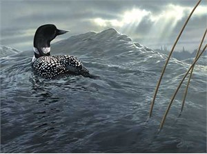 """Scot Storm Handsigned and Numbered Limited Edition Print:""""Weather the Storm-Loon"""""""