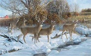 "Ron Van Gilder Handsigned and Numbered Limited Edition Print: ""Early Snow-Whitetail Deer"""