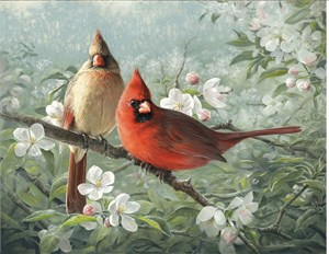 "Joe Hautman Handsigned and Numbered Limited Edition: ""Orchard Cardinals"""